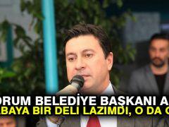 Bodrum Belediye Başkanı Aras: Kasabaya bir deli lazımdı, o da geldi