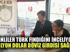 Çinliler Türk fındığını inceliyor: 58 milyon dolar döviz girdisi sağlandı